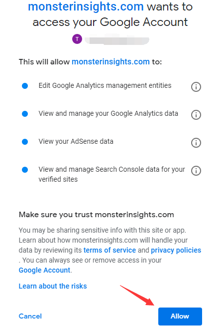 Allow MonsterInsights to access Google account