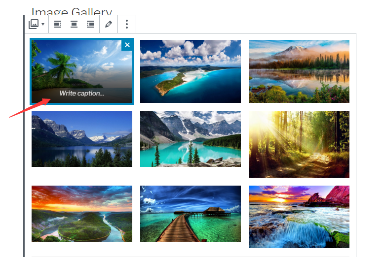create a photo gallery in WordPress