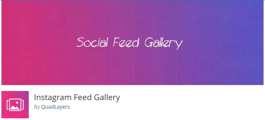 Instagram Feed Gallery
